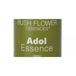 Adol Essence