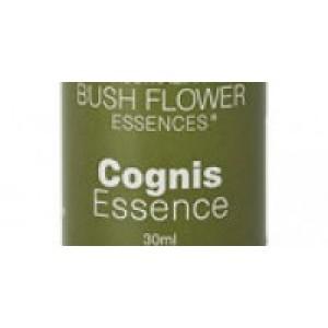 Cognis Essence