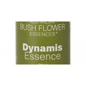 Dynamis Essence
