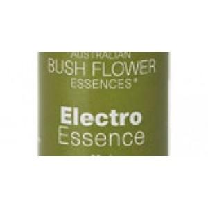 Electro Essence