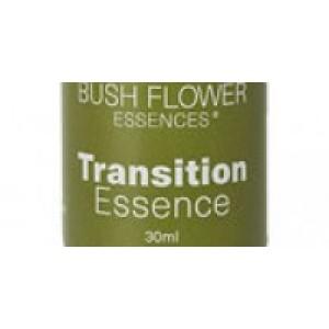 Transition Essence