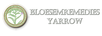 Bloesemremedies Yarrow