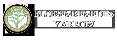 Bloesemremedies Yarrow